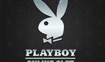 Азартный игровой автомат Playboy от Microgaming